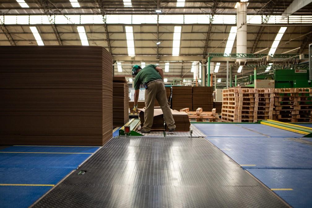PIB da indústria cresceu 0,7% no 2º trimestre; fábrica de papelão ondulado para embalagens no interior de São Paulo — Foto: Fabio Tito/G1