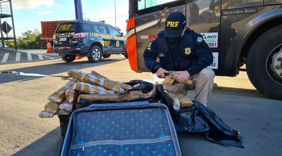 Quase 60 kg de maconha e mais de 80 comprimidos de ecstasy são apreendidos em ônibus na BR-116 — Foto: Divulgação/PRF