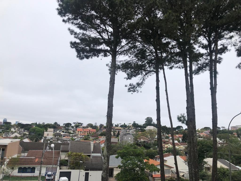 Primavera no Paraná vai começar com aspecto de inverno; veja a previsão do tempo - Notícias - Plantão Diário