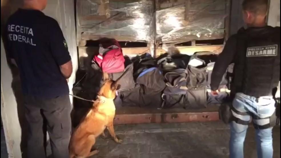 Na apreensão de março, cães farejadores ajudaram a localizar a droga (Foto: Divulgação/Polícia Civil)