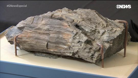 Pesquisadores retiram até 100 peças por dia dos escombros do Museu Nacional