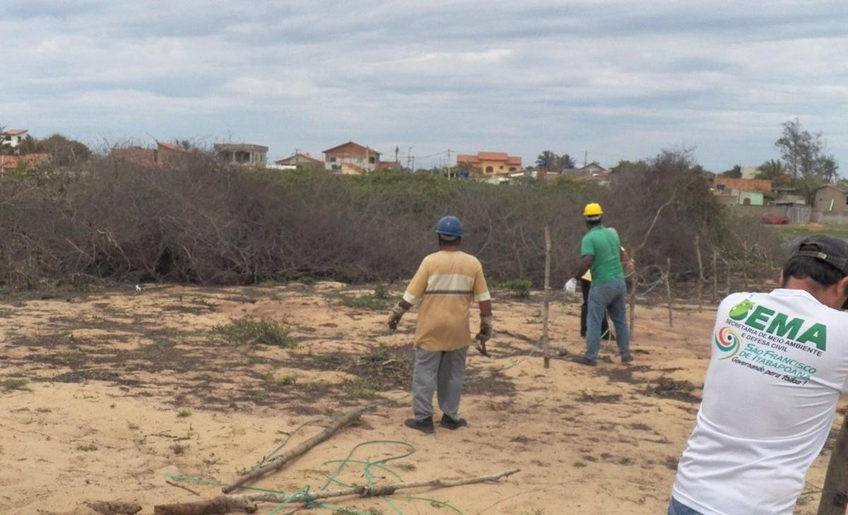 Operação desocupa 100 mil metros quadrados em área de preservação em São Francisco de Itabapoana, no RJ