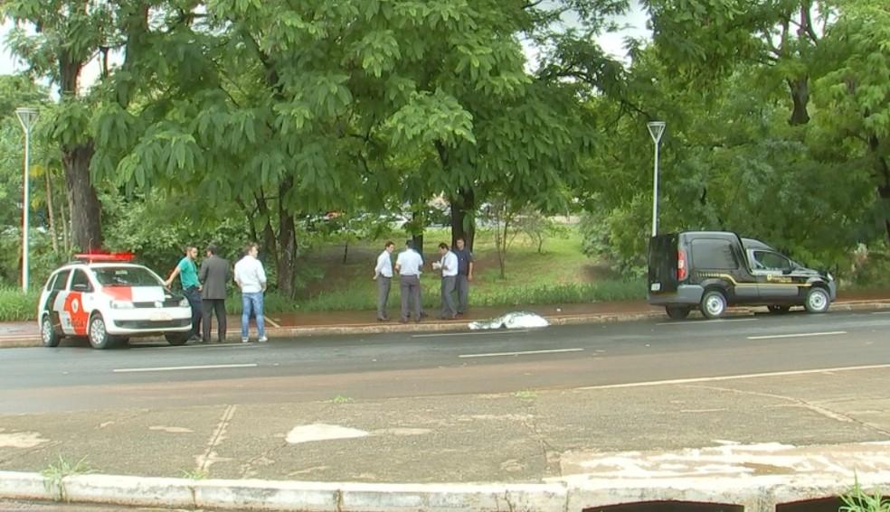 Idoso morreu atropelado ao tentar atravessar a Avenida José Munia — Foto: Reprodução/TV TEM