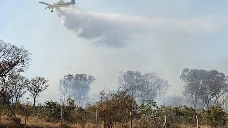 Avião combatendo fogo (Foto: Sindag/Divulgação)