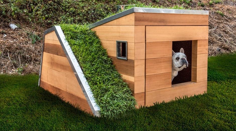 Casa cachorro (Foto: Studio Schicketanz)