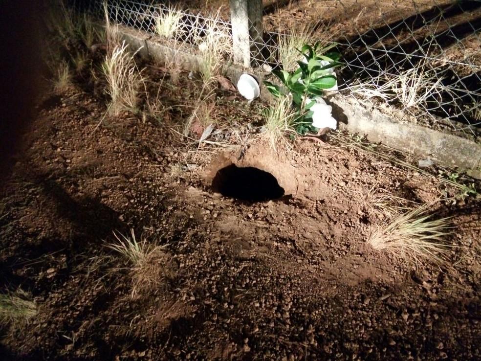 Roraima: Visitas à Penitenciária Agrícola de Monte Cristo estão suspensas