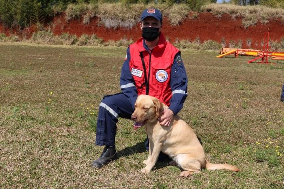 Cadela sol e soldado Pinheiro foram binômio do Corpo de Bombeiros de SC e já podem trabalhar em resgates  — Foto: Corpo de Bombeiros Militar de SC/Divulgação