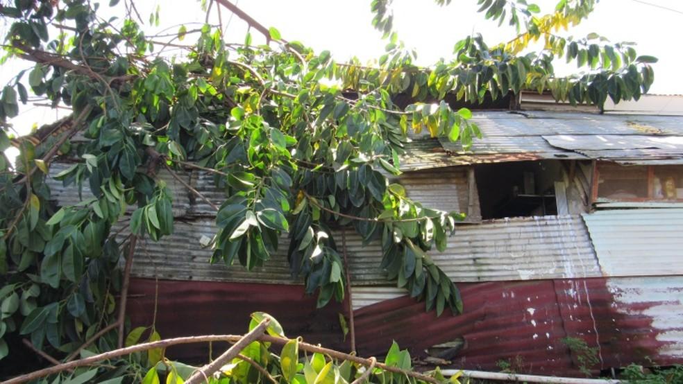 As famílias moram em condição de risco  (Foto: Ana Clara Marinho/TV Globo)