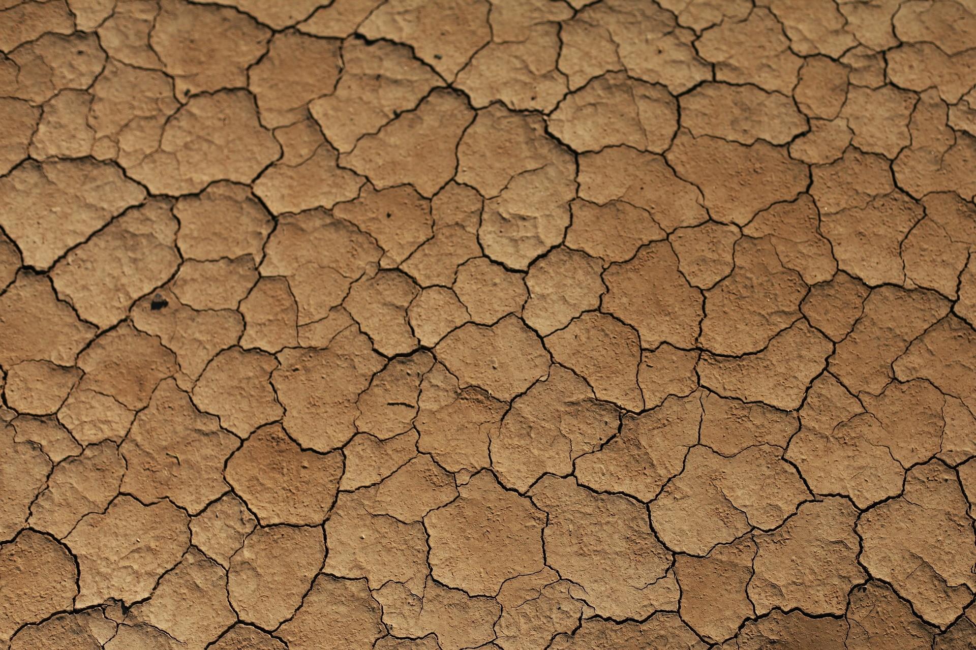Estado da Bahia vem apresentando aumento no índice de aridez e diminuição de chuvas (Foto: Creative Commons / cinelina)