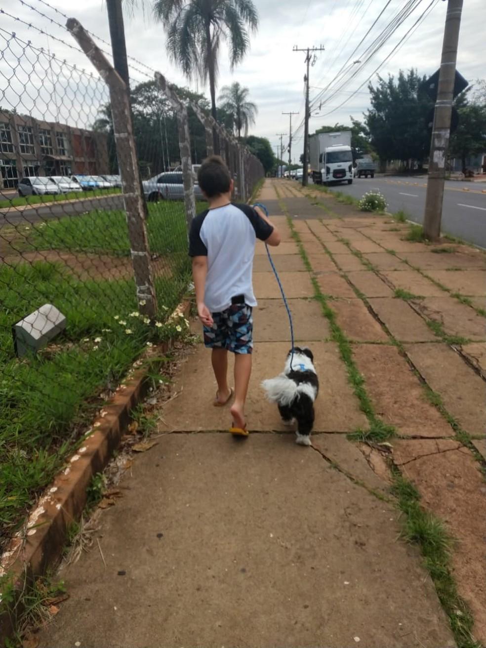 É aconselhável dar banho no animal ao chegar da rua, explica o médico veterinário — Foto: Arquivo Pessoal/Fábio Barbosa