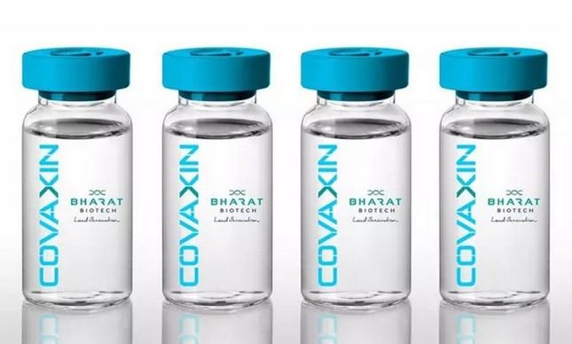 A vacina Covaxin foi desenvolvida por empresa indiana e agência sanitária do país