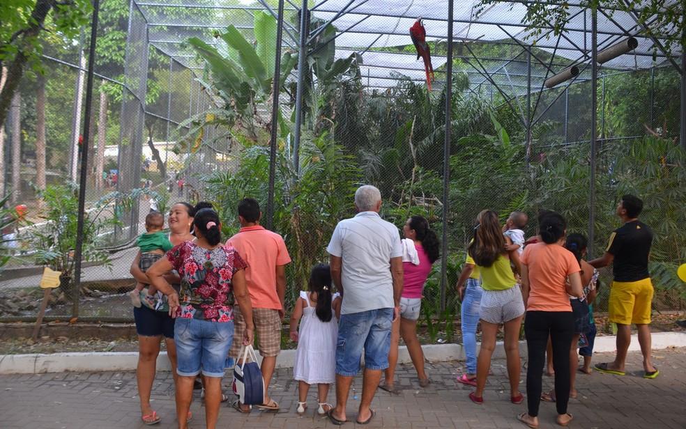 63dee9098 ... Crianças se divertiram observando as aves do Parque Arruda Câmara —  Foto  Diogo Almeida