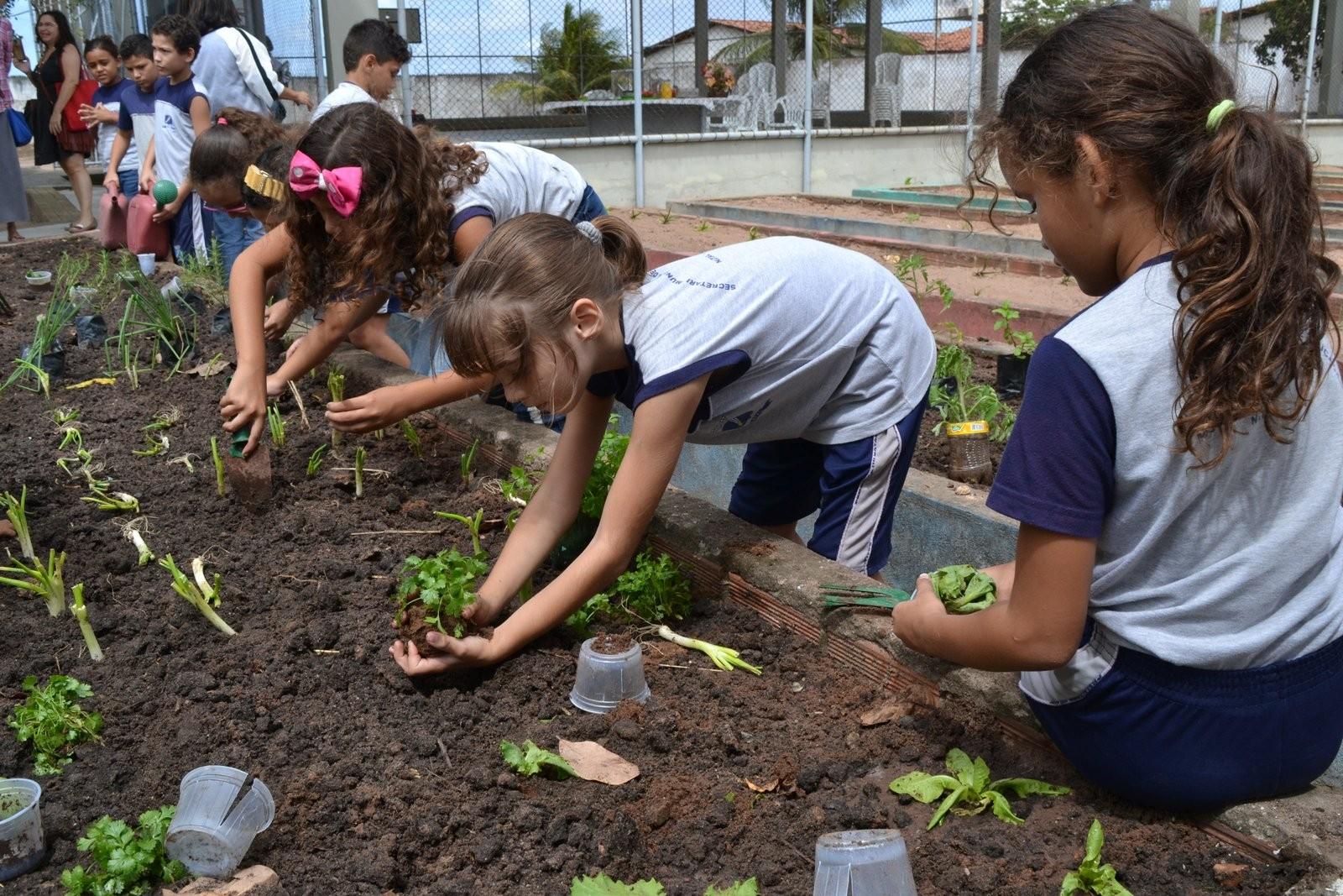 Projeto Horta nas Escolas estimula a alimentação saudável entre alunos de Natal