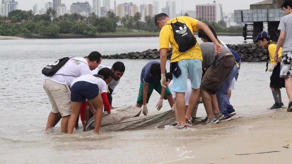 Durante limpeza na beira da praia, o grupo tirou um colchão de dentro do mar (Foto: Instituto Navegar/Divulgação )
