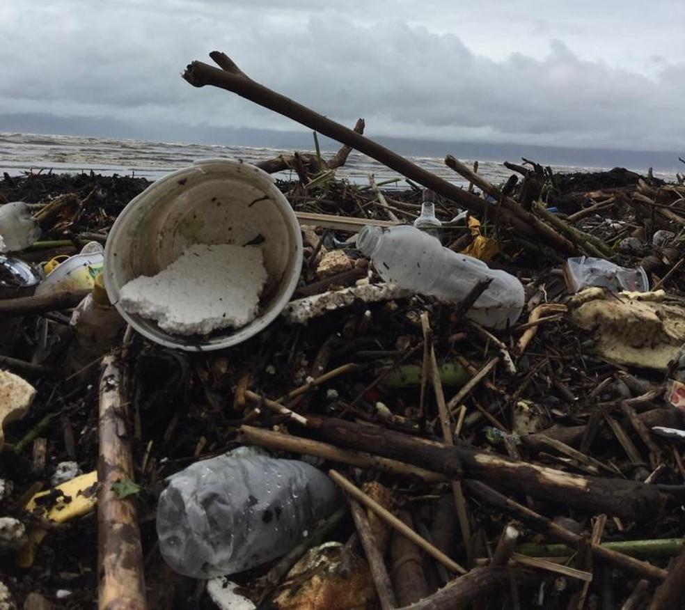 Praias de Caraguá amanhecem cobertas com galhos e até sofás arrastados pelas chuvas — Foto: Elisa Veeck/ TV Vanguarda