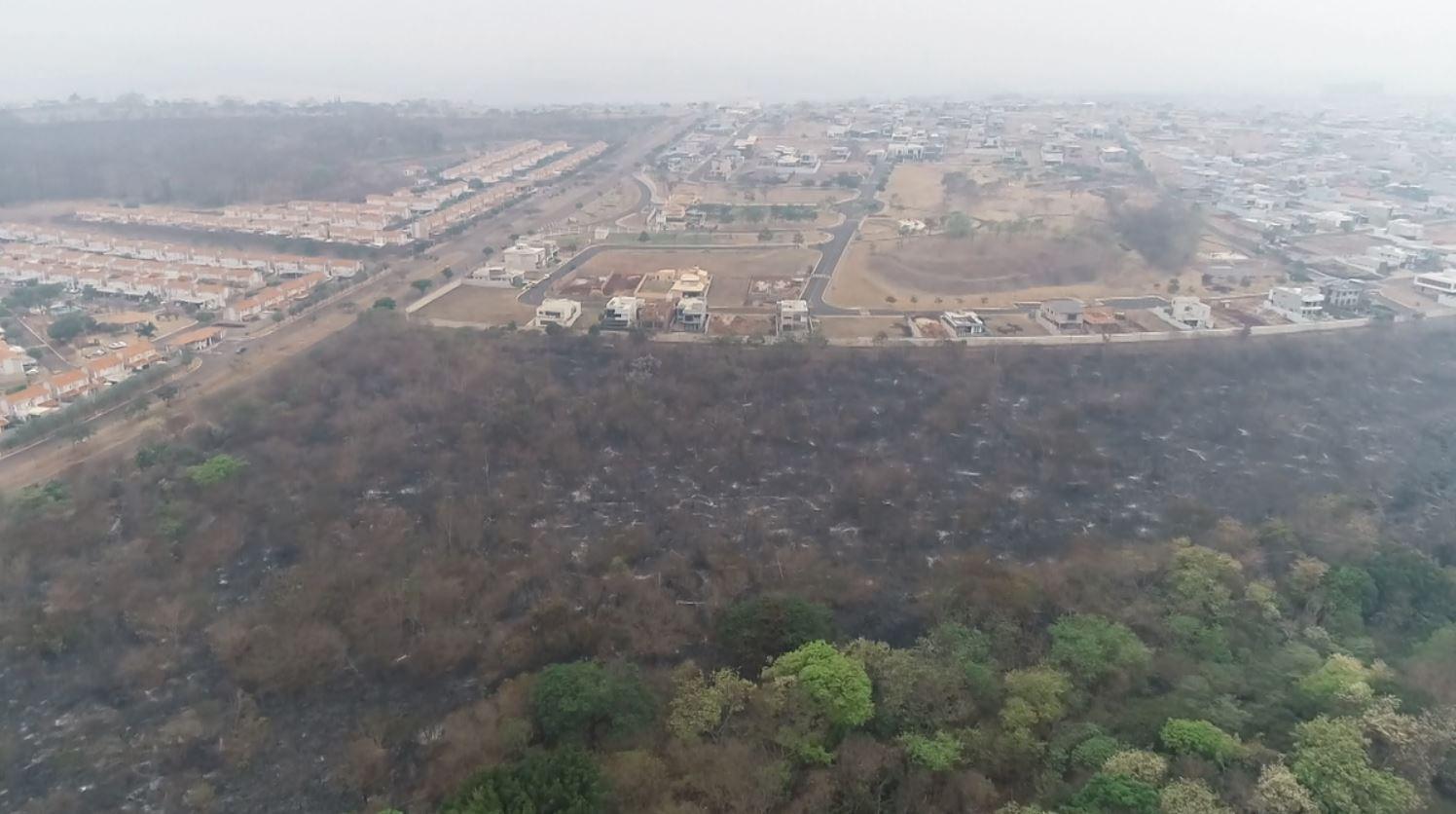 MP busca suspeito de causar incêndio que destruiu área superior a 10 campos de futebol em Ribeirão Preto