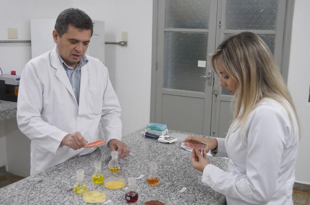 Alencar foi o orientador de Jackeline na realização do estudo (Foto: Rodrigo Pereira/G1)