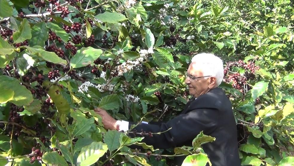 """""""As plantas de café são muito lindas, sabe. Eu gosto muito da natureza"""", diz Dona Ivone — Foto: Rede Social do Café"""
