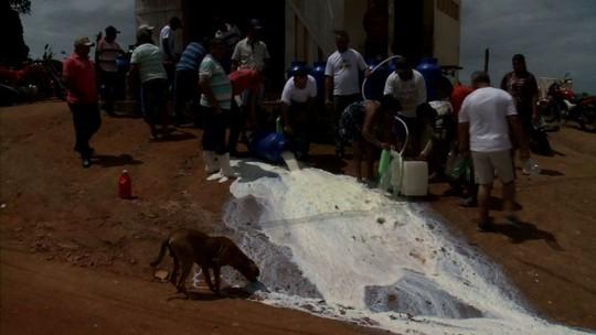 Sem receber há 3 meses, produtores jogam leite fora em Mar Vermelho, Alagoas