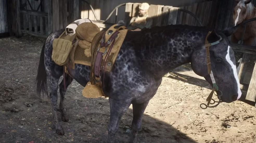 Os melhores jogos de cavalo