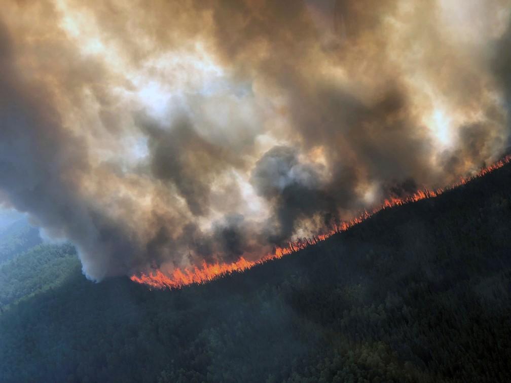 Incêndio florestal no Alasca, registrado em 29 de julho de 2019 — Foto: Divisão Florestal do Alasca/Reuters