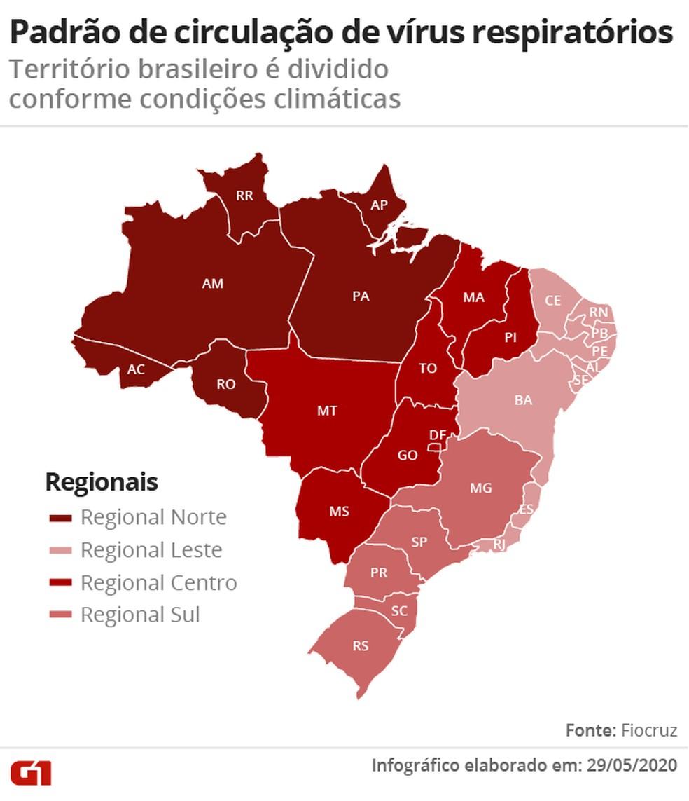 Mapa mostra as regiões do Brasil de acordo com os padrões de circulação de vírus respiratórios, segundo a Fiocruz. — Foto: Nikolas Espíndola/G1
