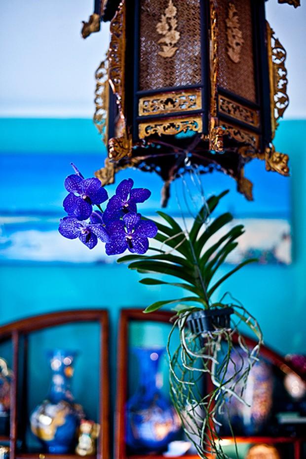 A casa da artista plástica Isabelle Tuchband é cheia de boas surpresas. Uma delas é a orquídea roxa, que fica pendurada no lustre (Foto: Ricardo Corrêa/Editora Globo)