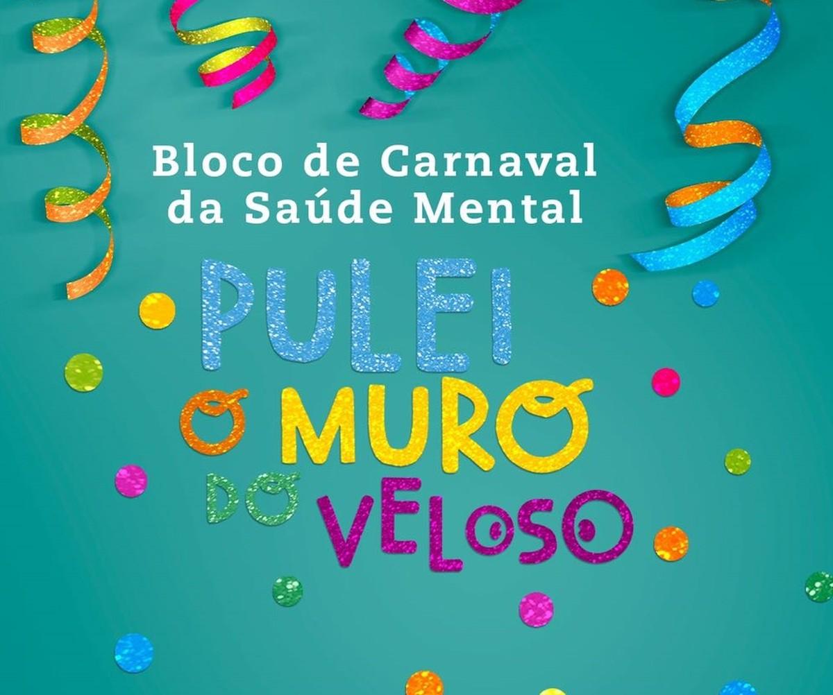 Bloco da Saúde Mental 'Pulei o muro do Veloso' é realizado em Caruaru
