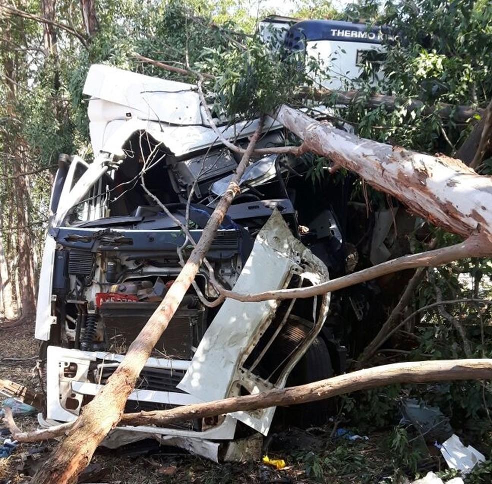 Caminhão bateu em várias árvores às margens da rodovia (Foto: Monize Poiani/TV TEM)