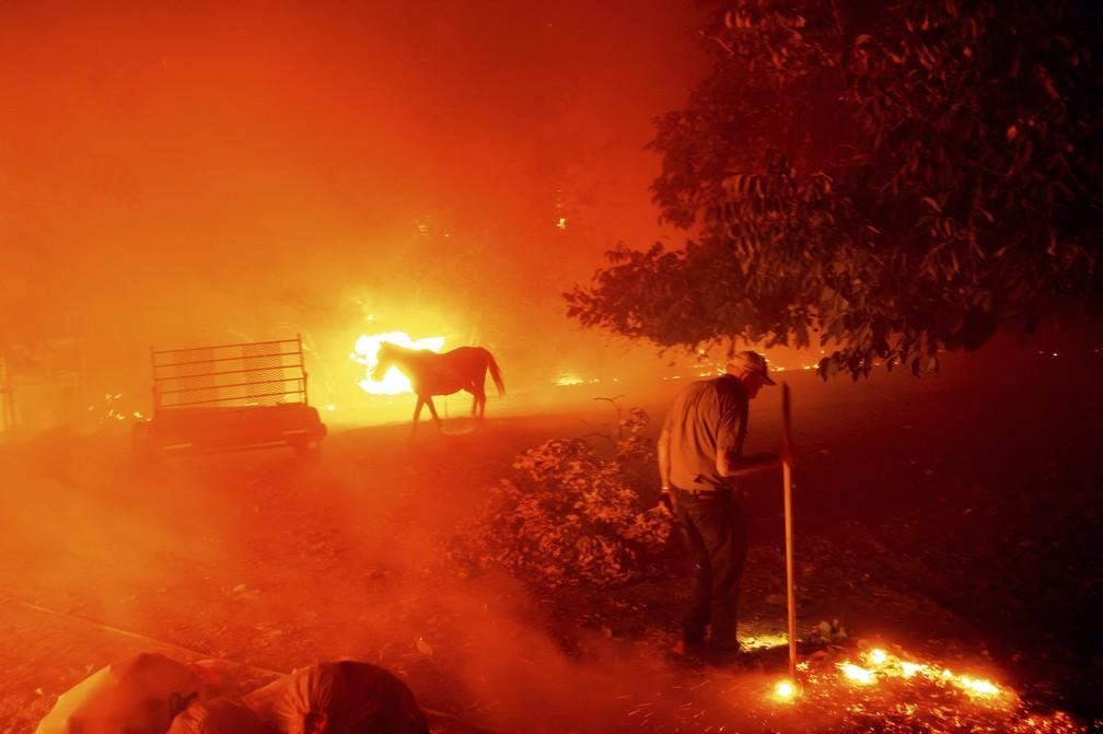 Foto mostra homem de 84 anos tentando salvar casa onde morou por 77 anos em meio a um incêndio em Vacaville, Califórnia, no dia 19 de agosto. — Foto: Noah Berger/AP