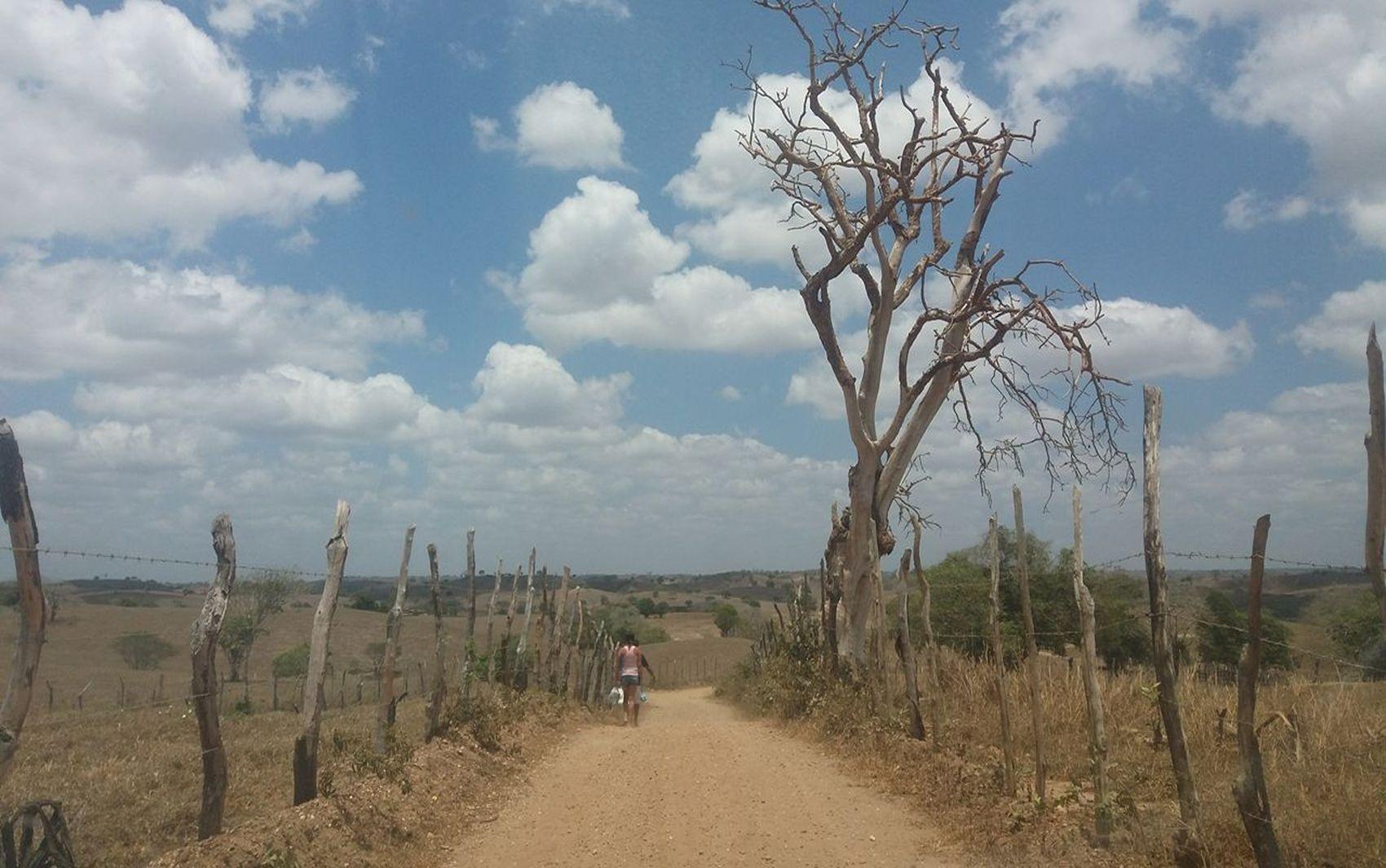 Levantamento registra avanço da seca em Sergipe no mês de outubro