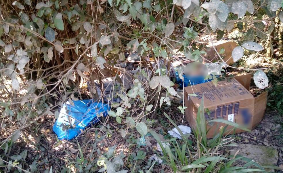 Corpos estavam em caixa de papelão e sacos plásticos em matagal em Novo Hamburgo (Foto: Polícia Civil/Divulgação)