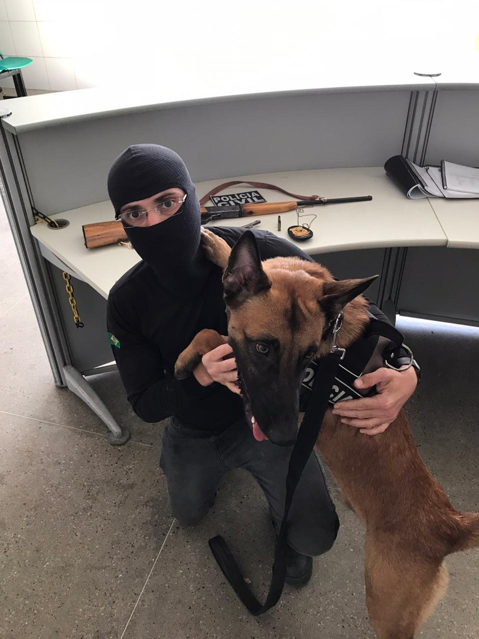 Um Revólver e um rifle foram achados por Ragnar nos quartos de uma residência que estava sendo investigada. — Foto: Polícia Civil/ Divulgação