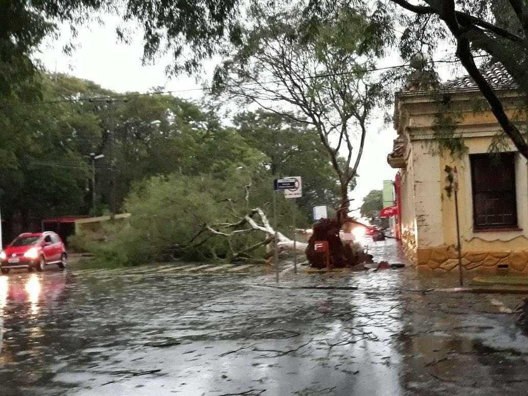 Temporal alaga ruas e derruba árvores e postes em Santo Ângelo