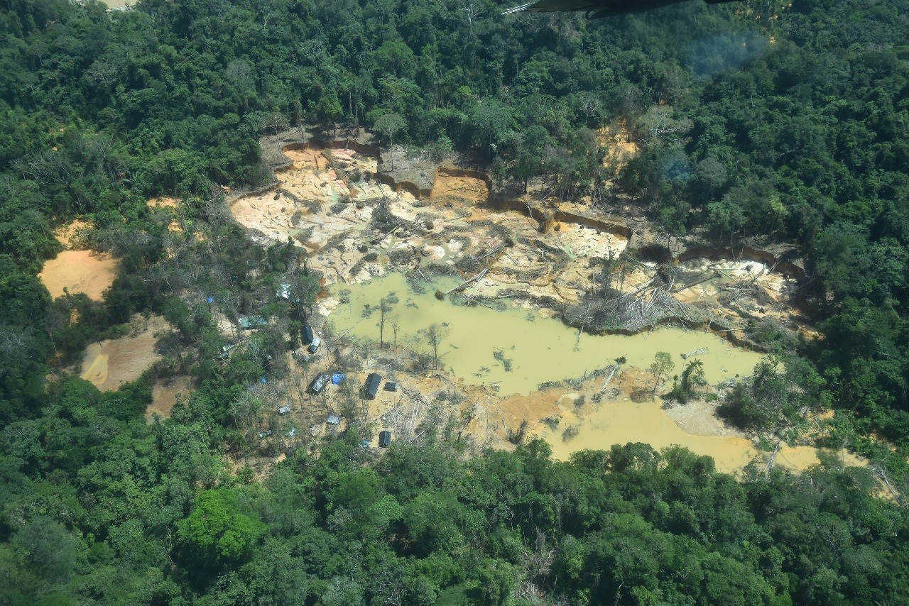 TRF-1 determina que governo federal retire garimpeiros da Terra Yanomami em Roraima