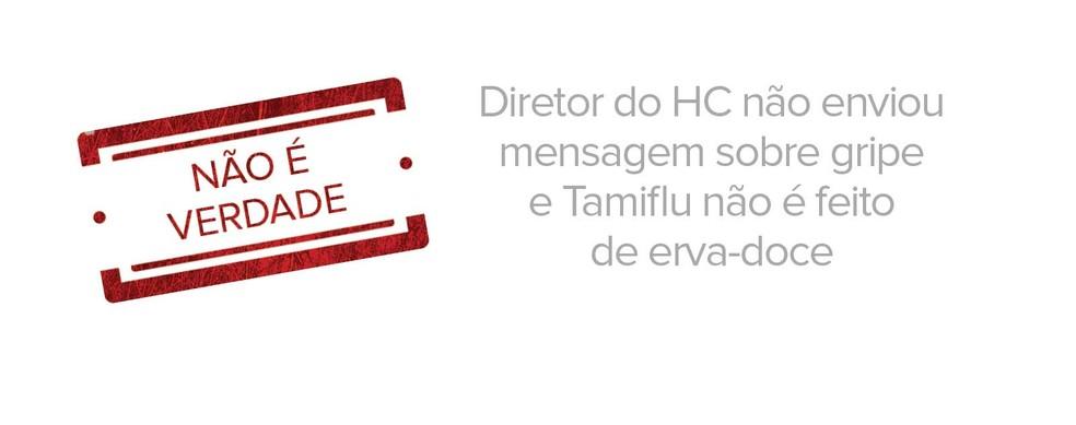 Diretor do HC não enviou mensagem sobre gripe e Tamiflu não é feito de erva-doce (Foto: G1)