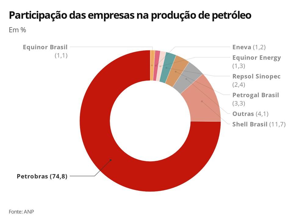 Participação de cada empresa na produção de petróleo no país - 2019 — Foto: Infografia G1