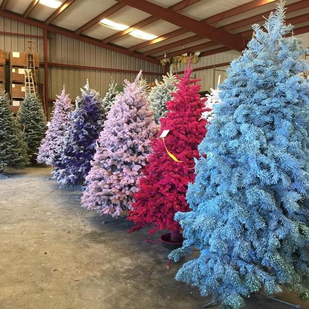 Árvores coloridas: queremos! (Foto: Reprodução/Instagram)