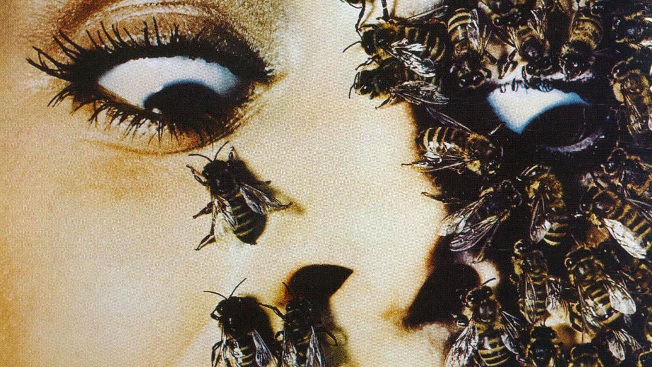 """Cena do filme """"As Abelhas Selvagens"""" de 1976 (Foto: Reprodução)"""