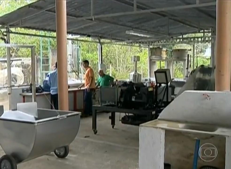 Com alambique já estruturado, preço do litro do etanol pode chegar a R$ 0,80 (Foto: Reprodução / TV Globo)