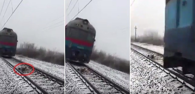O casal conseguiu se abaixar durante a passagem dos trens