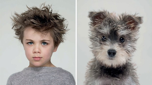Você se acha parecido com seu pet? Então confira essa série (Foto: Reprodução/gerrardgethings.com)