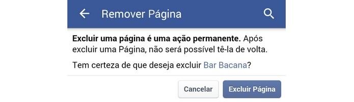 Tela de confirmação de exclusão da página do Facebook (Foto: Reprodução/Raquel Freire)
