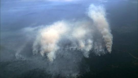 Desmatamento na Amazônia cresce 29,5%, diz Inpe