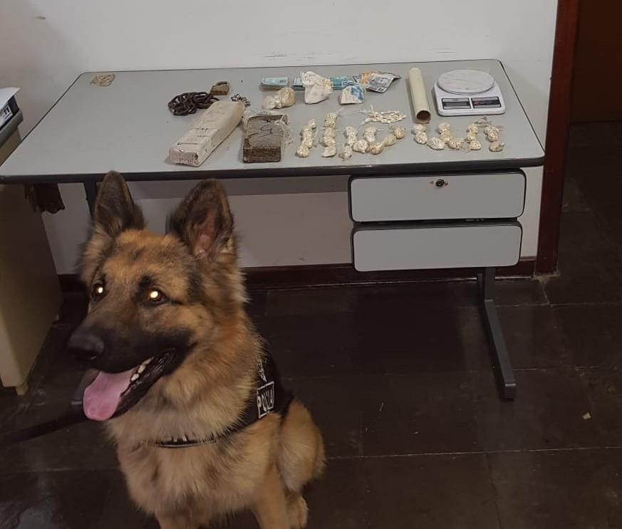 Homem suspeito de esconder drogas em cocheira de cavalos é preso em Piracicaba