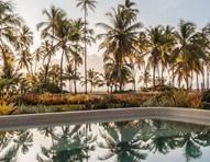 7 jardins com palmeiras e coqueiros