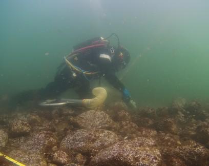Navio de guerra naufragado no século 17 é encontrado na costa da Dinamarca