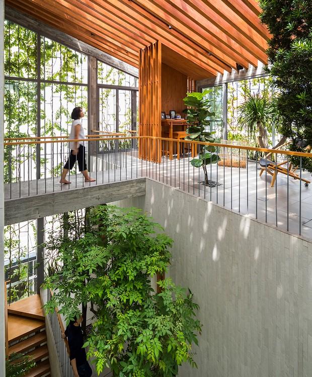 No topo da propriedade, ripas de madeira dão suporte ao teto transparente para inundar o ambiente com a luz do sol  (Foto: Hiroyuki Oki/ Dezeen/ Reprodução)