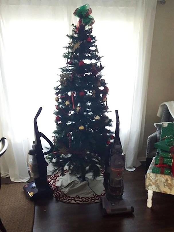 10 deias geniais para proteger sua árvore de natal dos cachorros e gatos (Foto: Reprodução)
