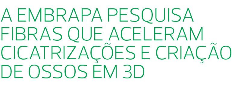 Agropecuária moderna aponta para um cenário em que o campo terá mais dados, melhor gestão e eficiência no uso de insumos (Foto: Reprodução/Programa Globo Rural)